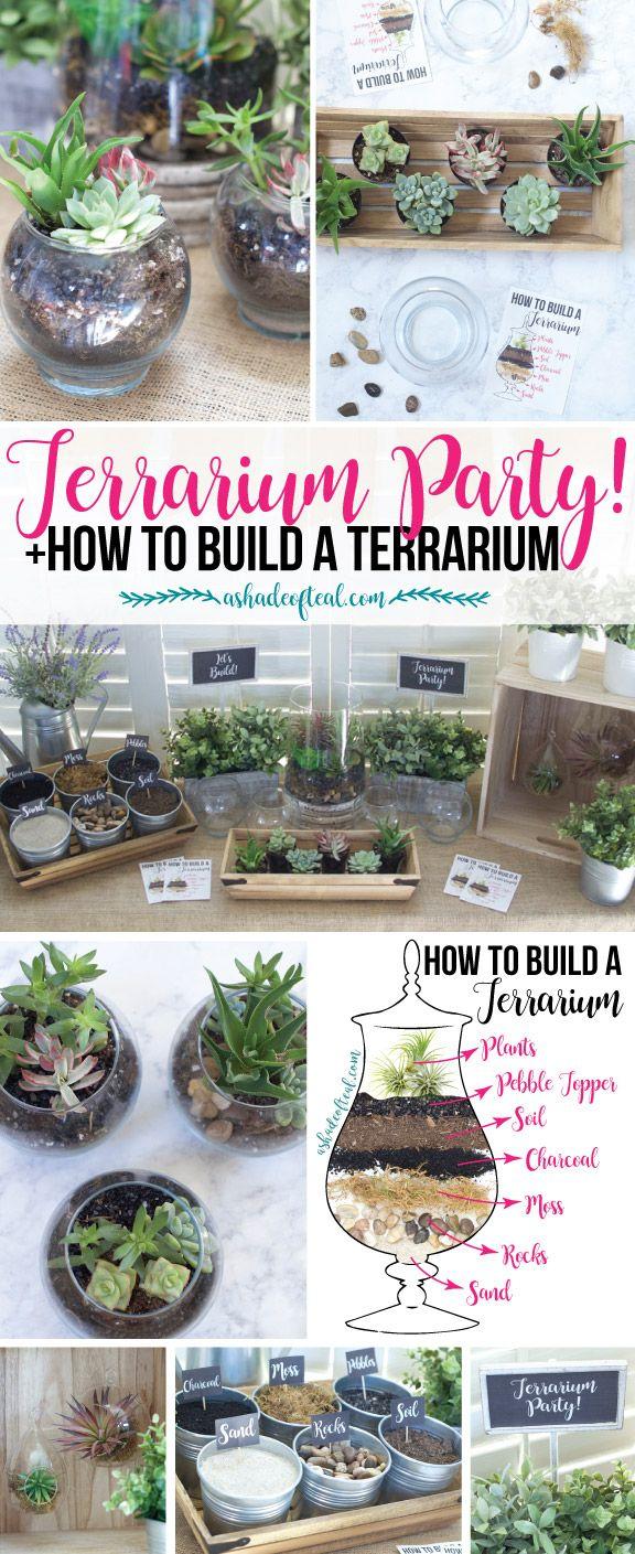 Comment Faire Un Terrarium Plante Grasse check out this terrarium party! plus let your kids make a