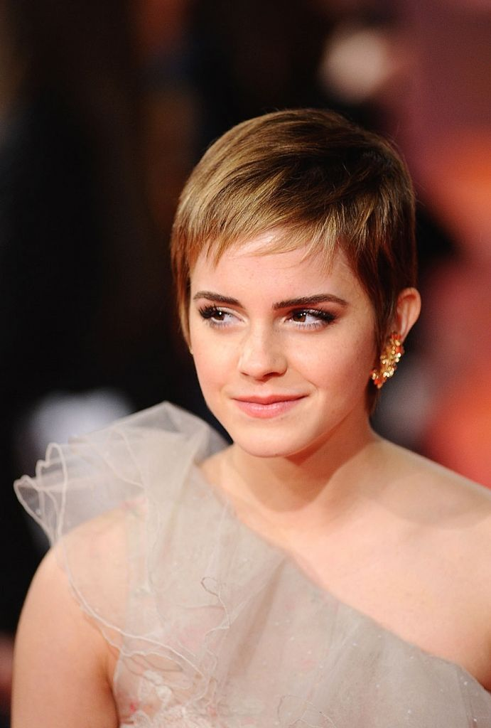 Beautiful Short Pixie Hairstyles For Round Face   Cute Short ...