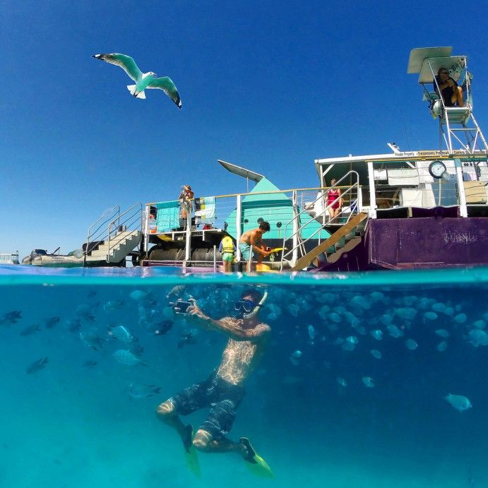 The Great Barrier Reef Is An Experience For All Ages To