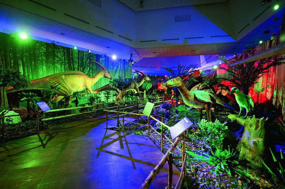 Pin Auf Tyrannosaurus Rex T Rex Sonderausstellung Salzburg