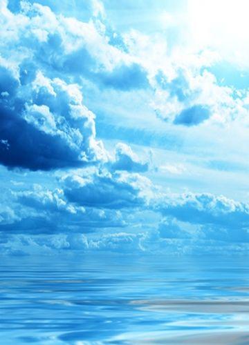 tumblr static bird flight wings height clouds sky dark blue white light sun sea surface.