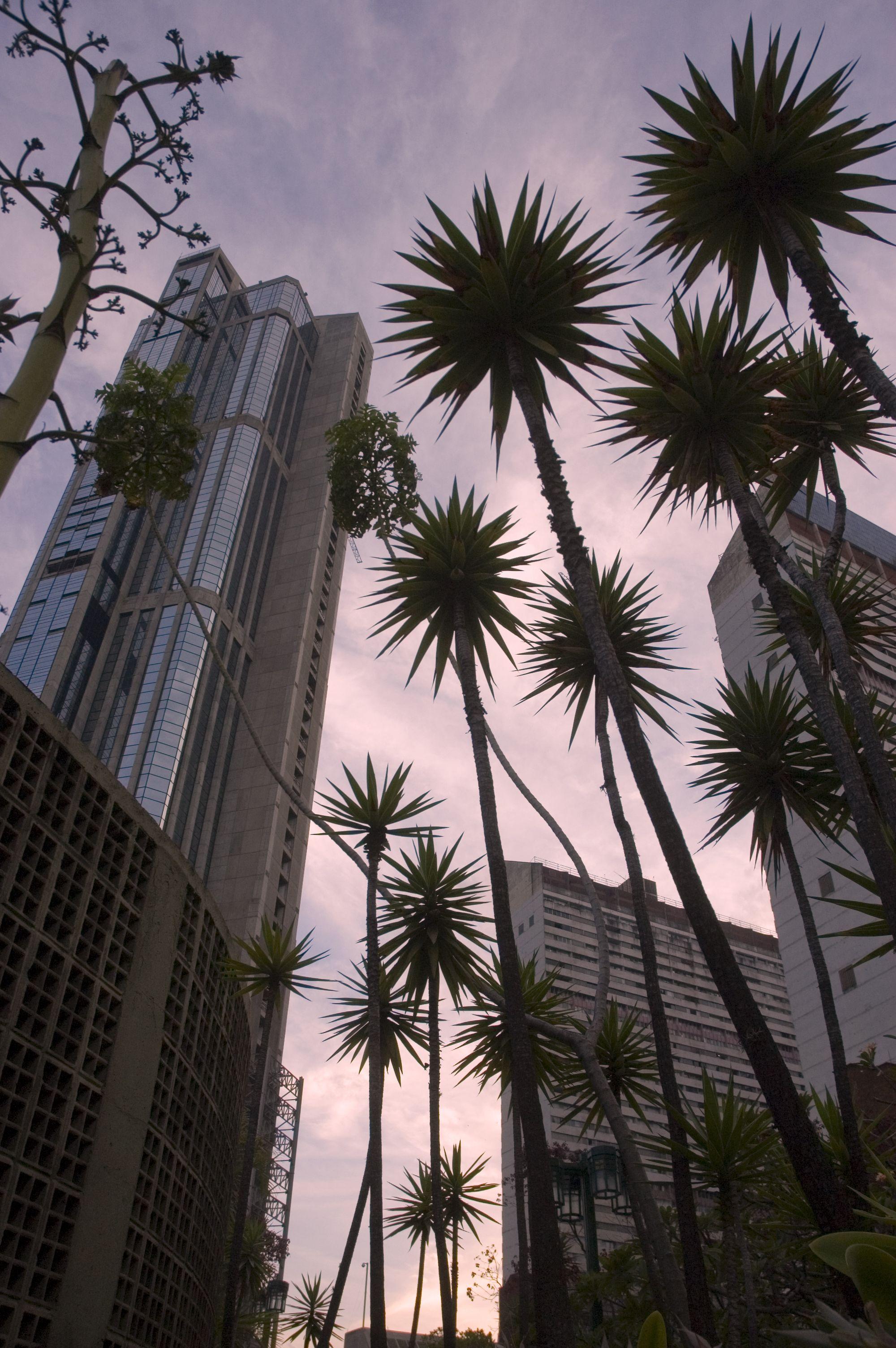 Las Torres Gemelas Del Parque Central Son Dos Rascacielos Ubicados En El Parque Central De Caracas En Venezuela Es Una Zo Venezuela Caracas Places To Travel