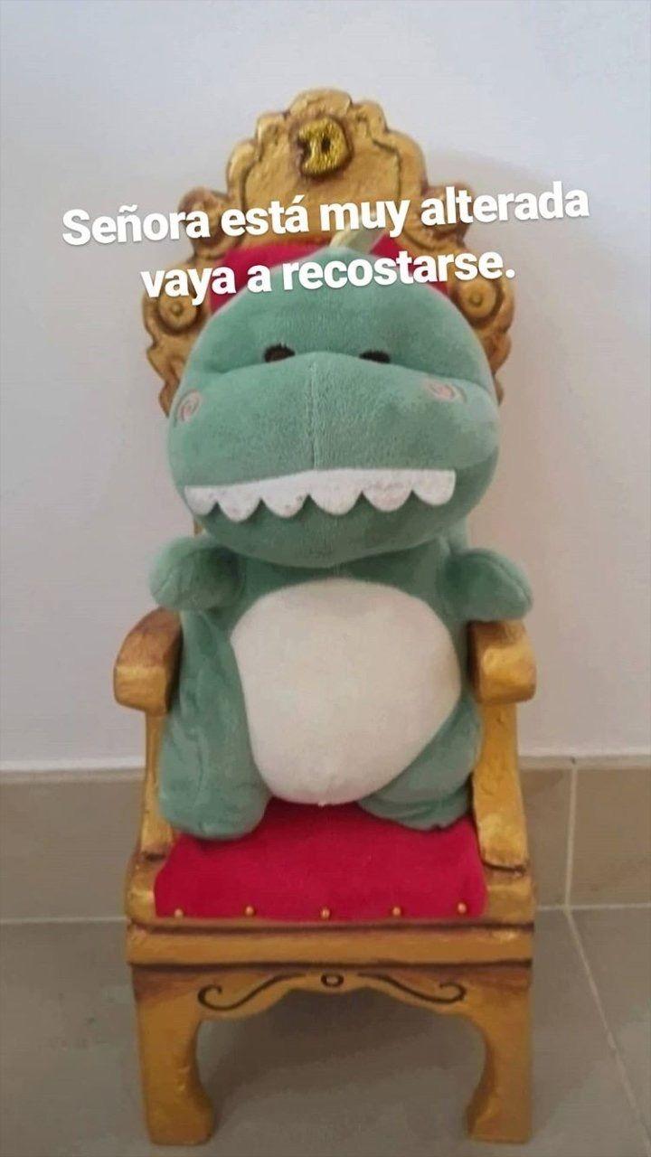 Senora Esta Muy Alterada Vaya A Recostarse Memes Amor Memes Graciosos Para Whatsapp Memes Lindos