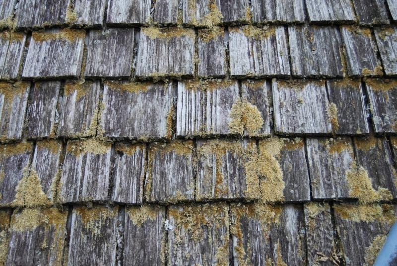 Best Cedar Roof Cleaning Aurora Cedar Roof Roof Cleaning Cedar 640 x 480