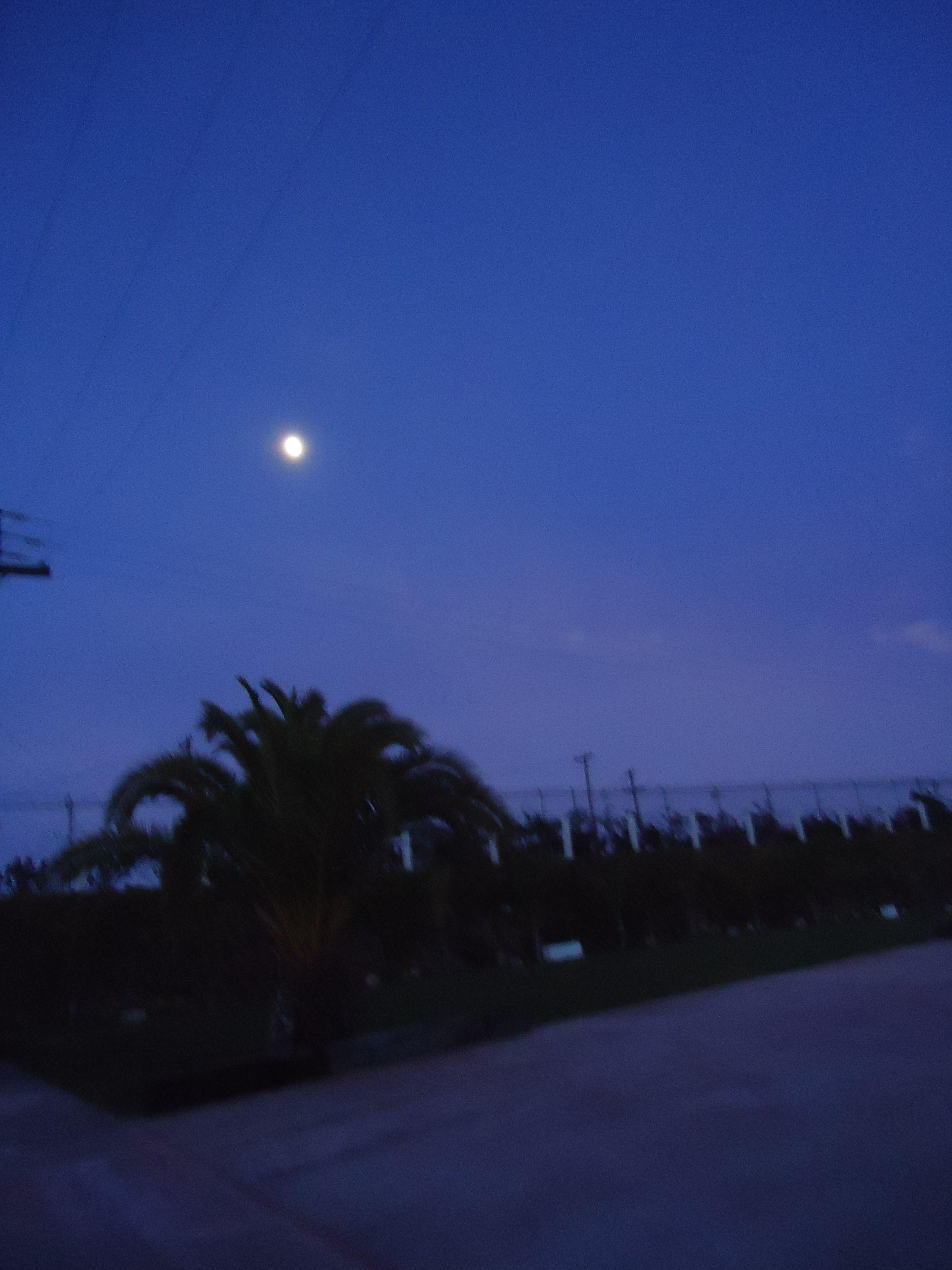 Luna emergiendo! Vista desde Jardín de Fiestas Calypso Gardens!