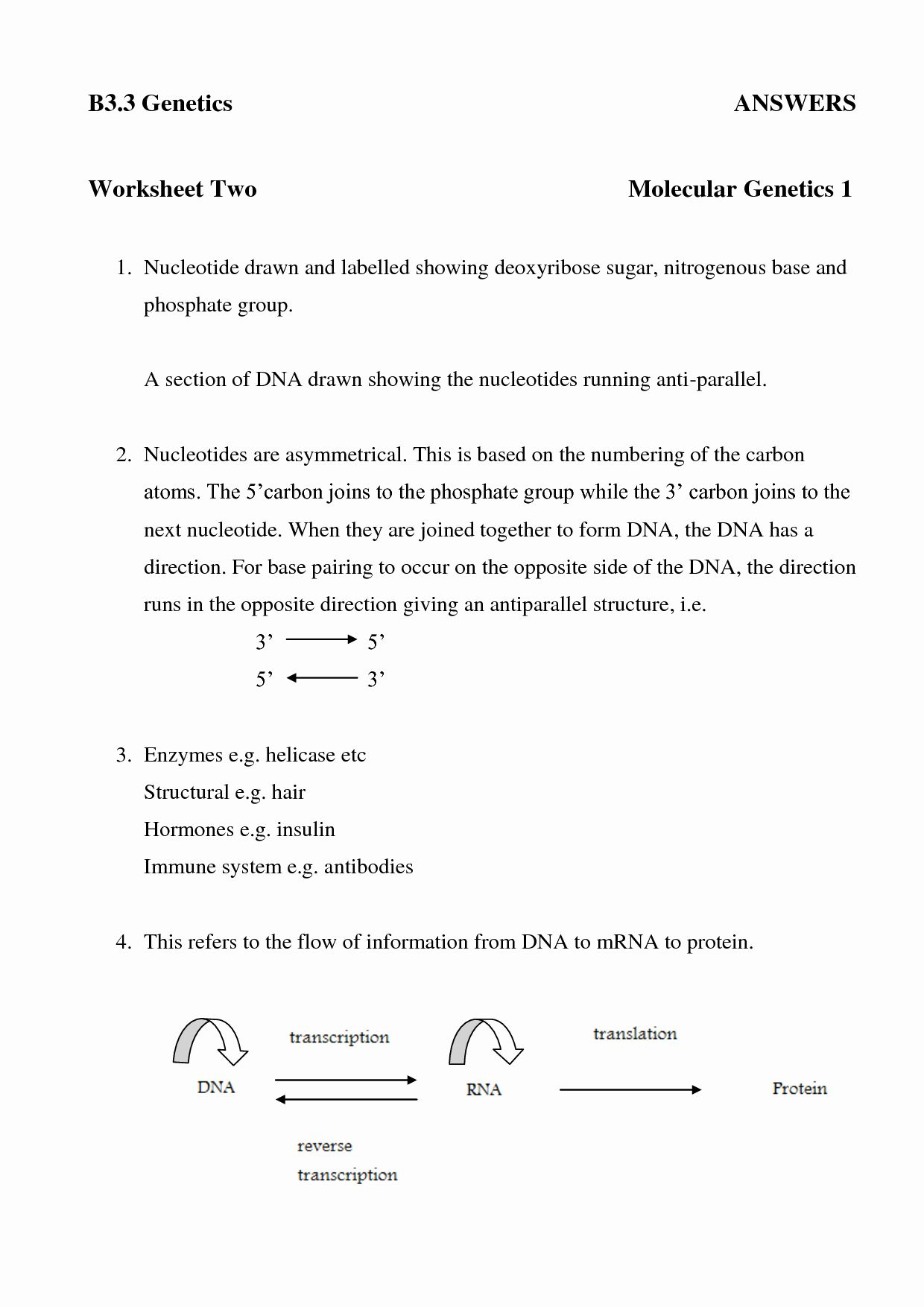 50 Dna And Rna Worksheet Answers In