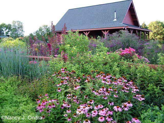 Ideas For Front Yard Garden 130 simple fresh and beautiful front yard landscaping ideas Gardening Gone Wild Front Yards Revisited Nancy J Ondra
