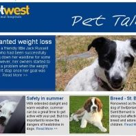 Vetwest Animal Hospitals   Vet West Vets in Perth