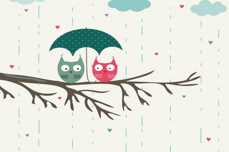 Cute Owls Wallpaper Mural