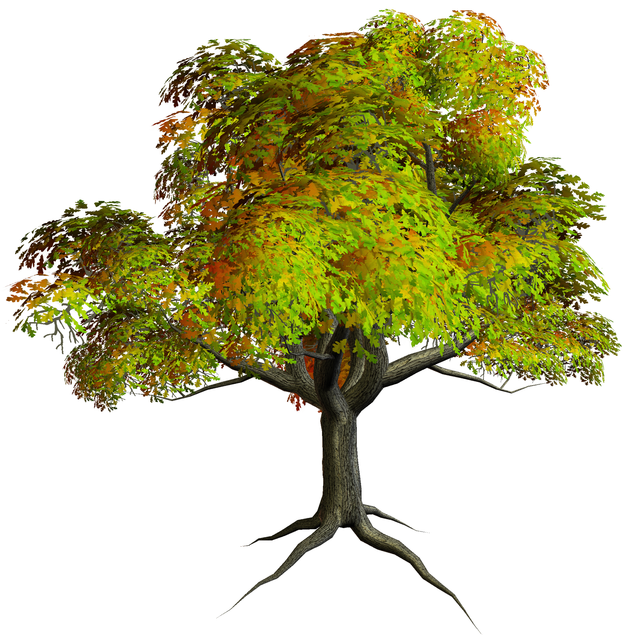 Tree Images Free Free Download Clip Art Free Clip Art On