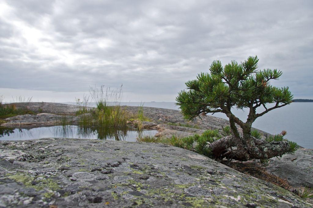 Kaunissaari, Fagerö