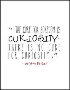 Curiosity Quotes Impressive Image Result For Quotes About Curiosity  Curiosity Desk  Pinterest