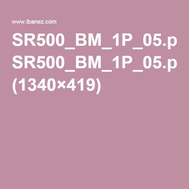 SR500_BM_1P_05.png (1340×419)