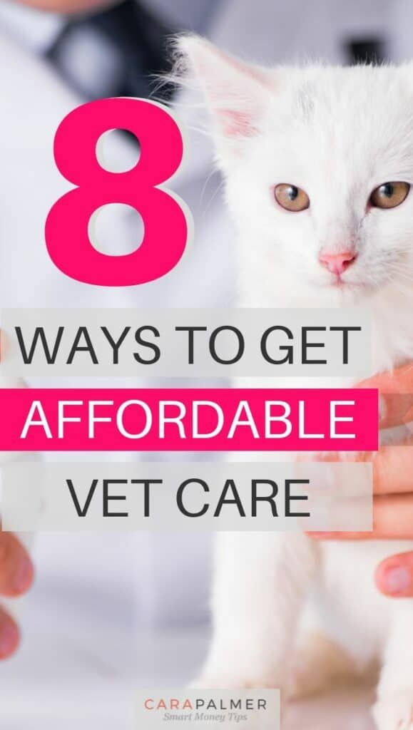 8 Ways To Get Affordable Vet Care (With images) Dog care