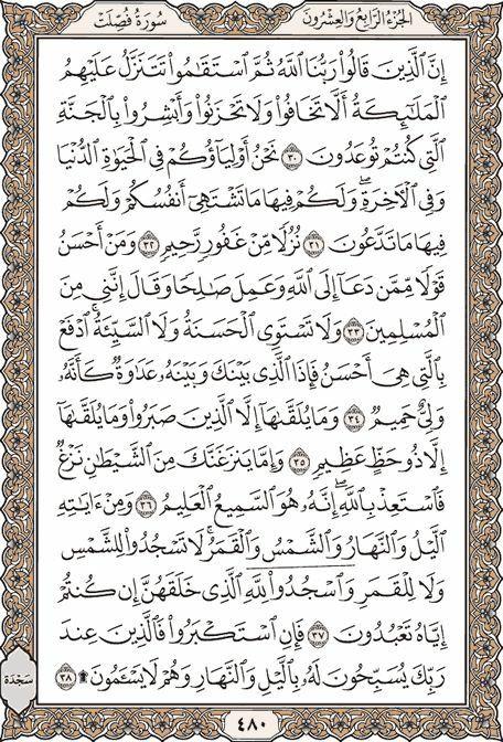 Pin By Khaled Bahnasawy On ٤١ سورة فصلت Holy Quran Quran Recitation Quran Book