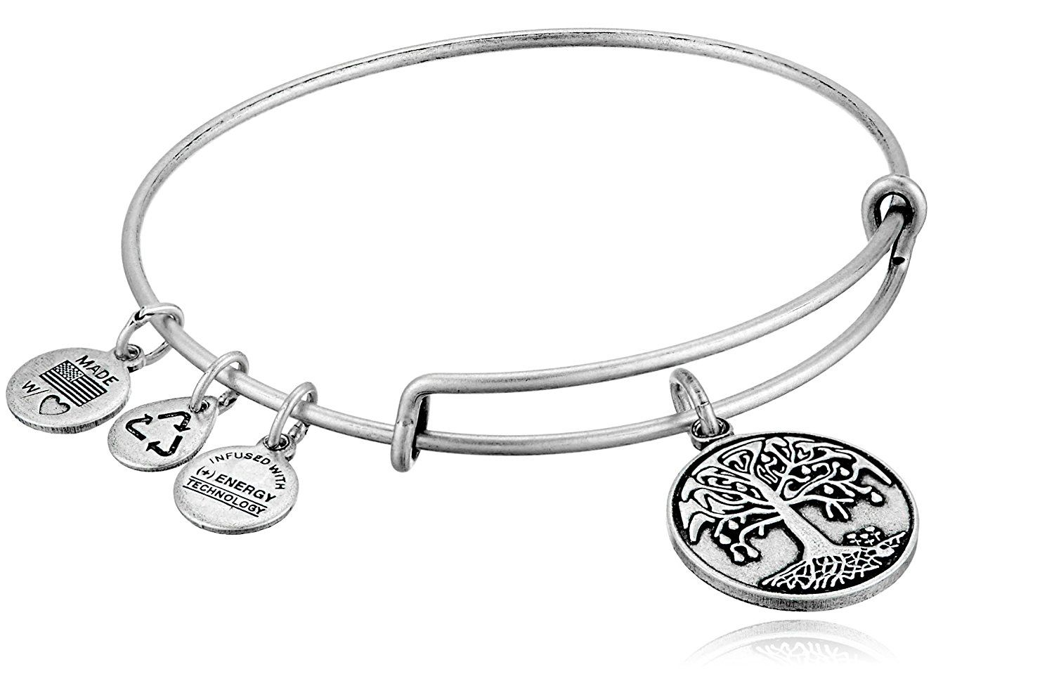 Alex And Ani Bangle Bar Tree Of Life Rafaelian Silver