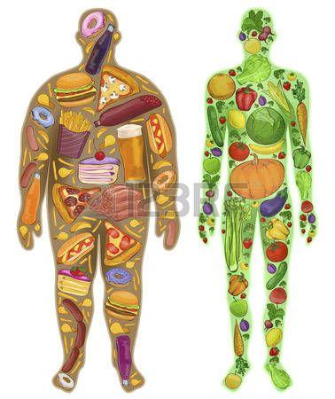 healthy fat Human, thin, fat Nutrition, food New illustration - gesunde küche zum abnehmen
