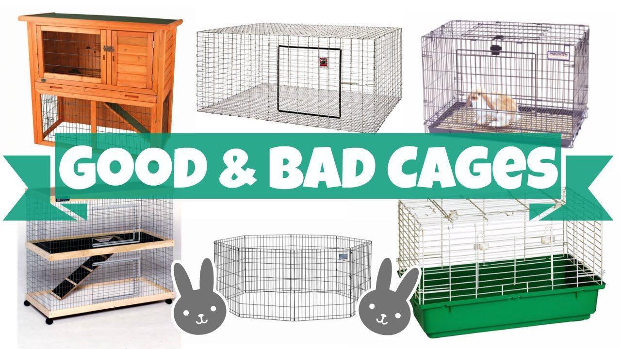 Good Vs Bad Rabbit Cages Rabbit Cages Indoor Rabbit Cage Diy