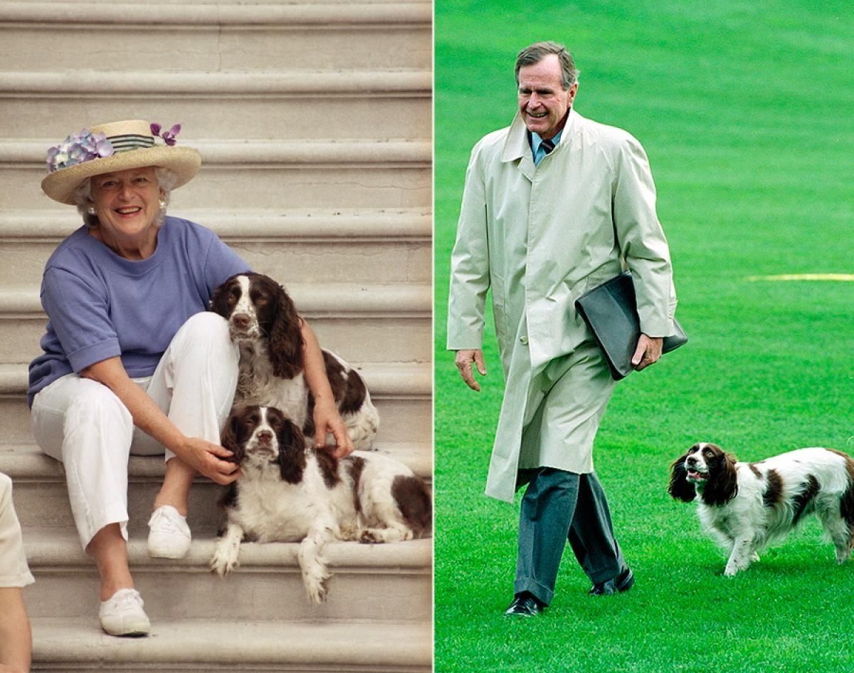 President George H W Bush And Barbara Bush With Millie And Ranger