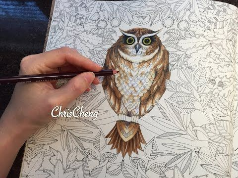 Sharing How I Color The Owl With Prismacolor Premier Colored Pencils Coloring Book Secret Garden By Johanna Basford