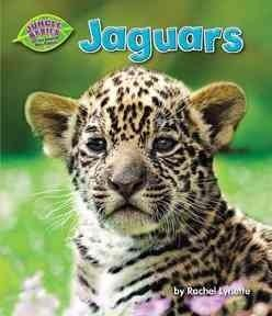 Introduces Jaguars Describing Their Physical Characteristics Habitat Life Cycle And Predatory Behavior