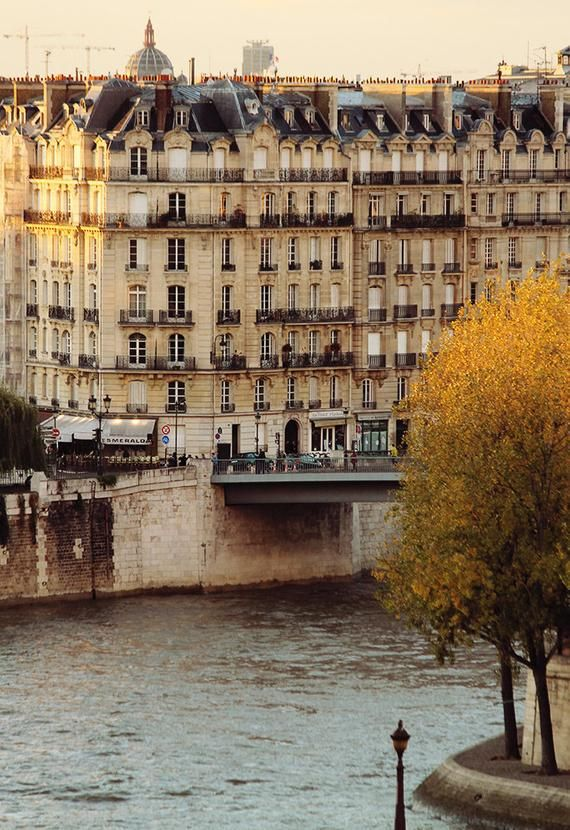 Autumn in Paris, Evening Light on the Seine, Paris Photography, Fall leaves in Paris, Ile St Louis,