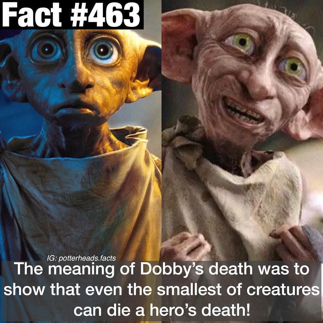 Harry Potter Facts On Instagram Qotd Dobby Or Kreacher Comment If You Knew Th Kreacher Harry Potter Harry Potter Facts Dobby Harry Potter Quotes