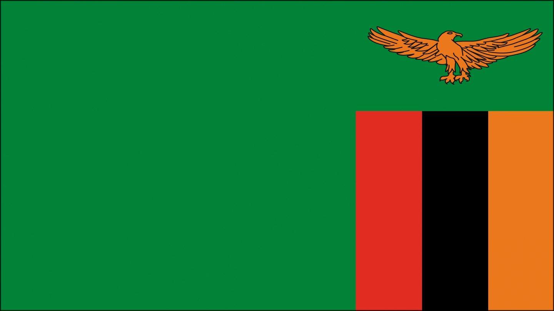 Zambia En La Bandera De Zambia Con Capital En Lusaka Está Representada Un águila La Cual Refleja La Habilidad De Las Pe Zambia Banderas Banderas Africanas