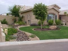 10 easy arizona landscaping ideas for spring i need - Cheap no grass backyard ideas ...