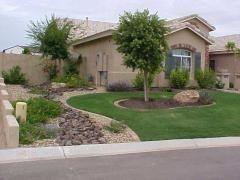 10 Easy Arizona Landscaping Ideas For Spring I Need Something