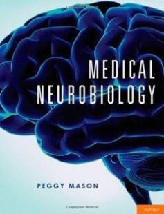 Medical neurobiology 1st edition free download by peggy mason phd medical neurobiology 1st edition free download by peggy mason phd isbn 9780195339970 with booksbob fandeluxe Images