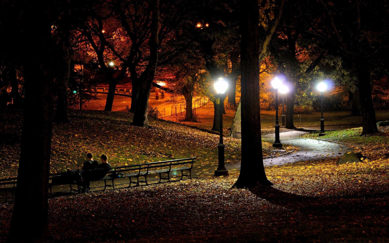 Autumn Night Autumn Park Park Autumn Night