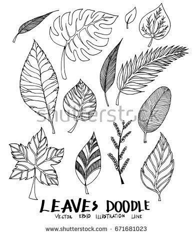 Set Of Doodle Leaves Sketch Line Vector Illustration Leaves Sketch Leaf Drawing Cute Doodle Art