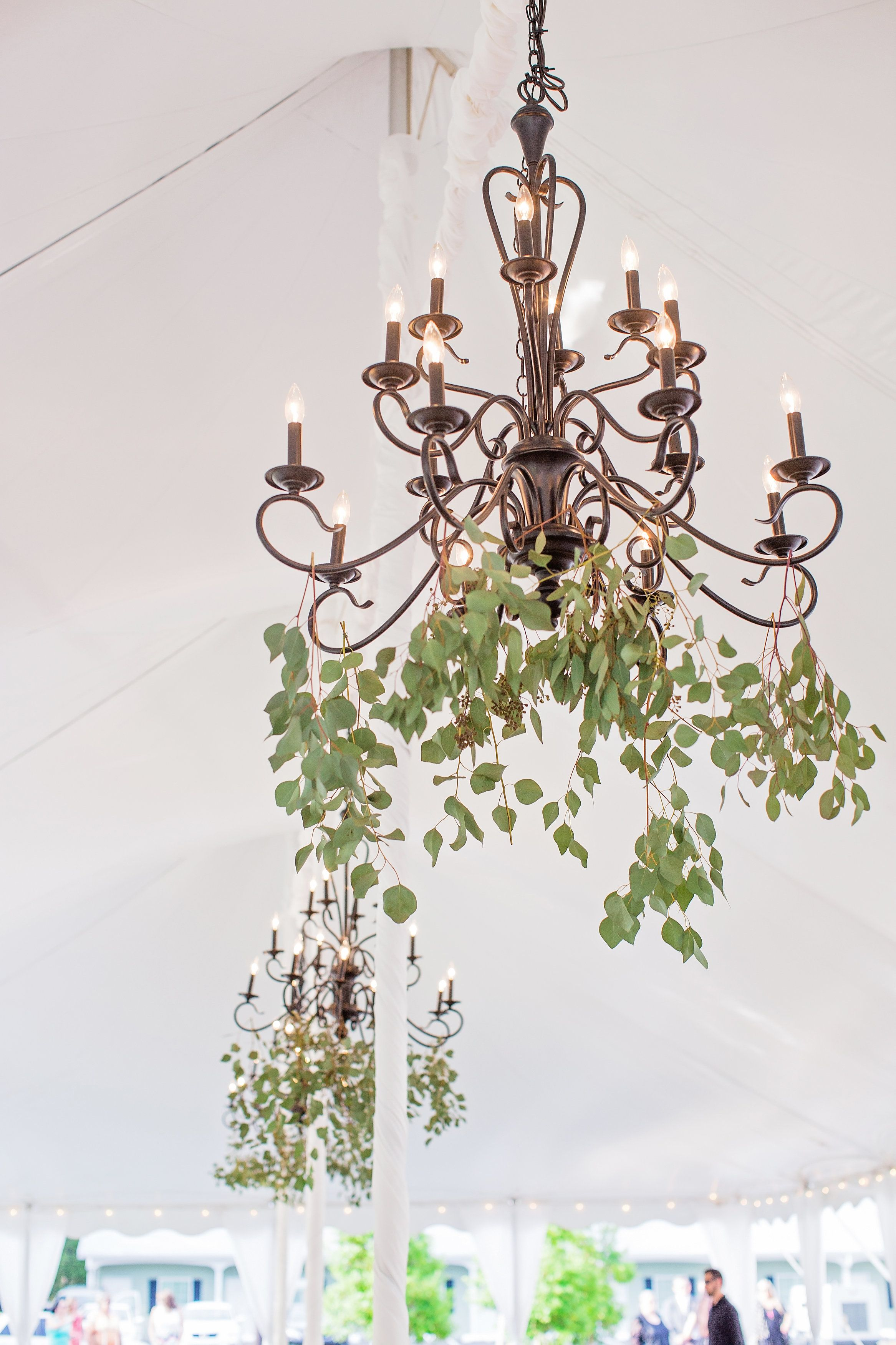 Greenery hanging in chandeliers wedding tent decoration ideas foral greenery hanging in chandeliers wedding tent decoration ideas foral chandeliers chandeliers with greenery designed by arubaitofo Gallery