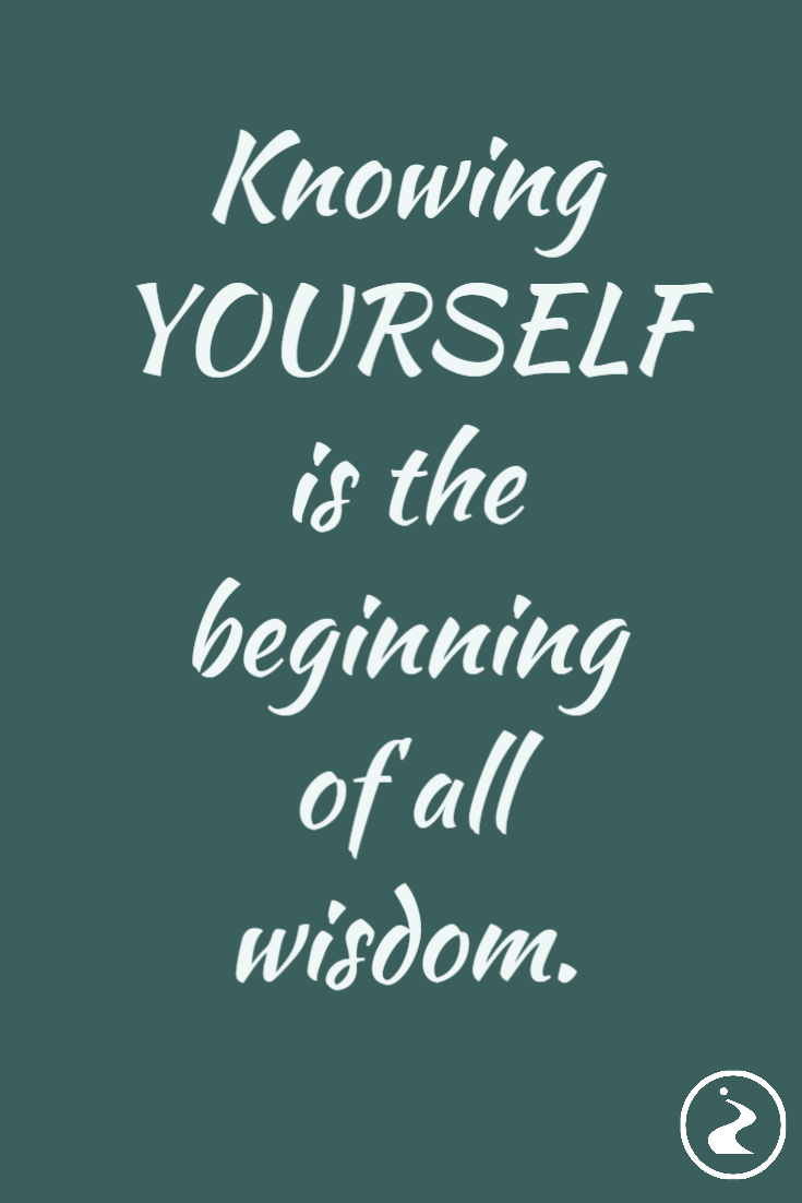 Knowing Yourself Is The Beginning Of All Wisdom Know Yourself Quotes Writing Humor Career Quotes Inspirational