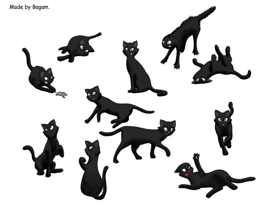 Cat Poses By Bagam On Deviantart Cat Pose Poses Artists Like