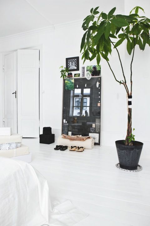Using white in a bedroom can be really elegant.  The large plant makes the space feel so integrated with nature and completely peaceful.