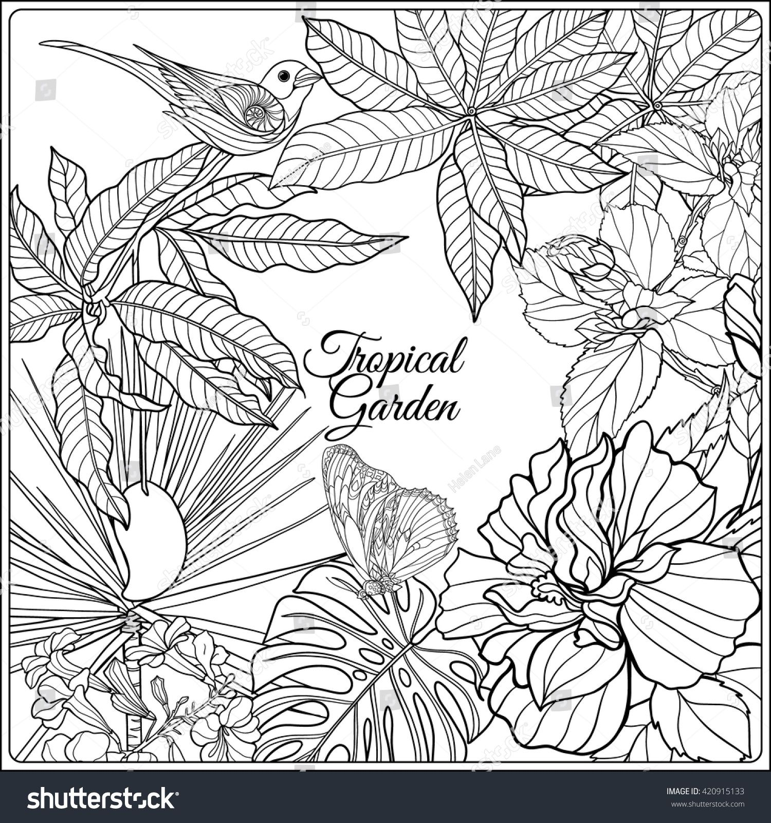 Tropical wild birds and flowers and space for text. Coloring book ...