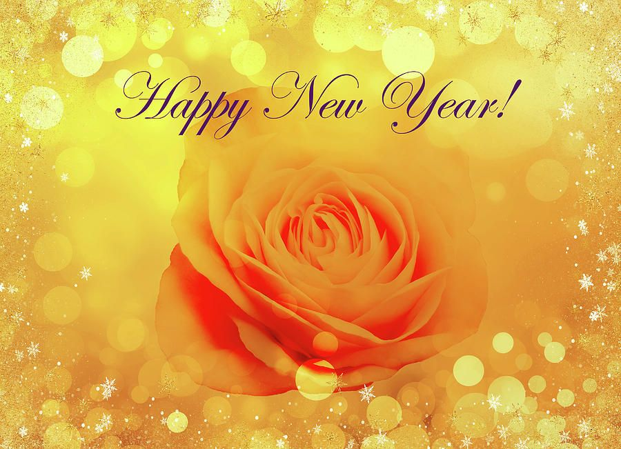 Decorative Yellow Rose Happy New Year By Johanna Hurmerinta Happy New Year Greetings New Year Greeting Cards Happy New Year