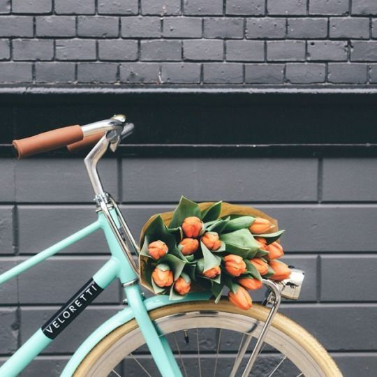 We're already excited for all things spring! Riding around without a care in the world, with a bunch of tulips in your basket.