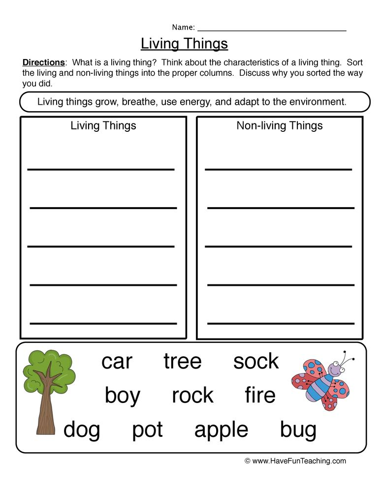 Image result for living things and nonliving things ...