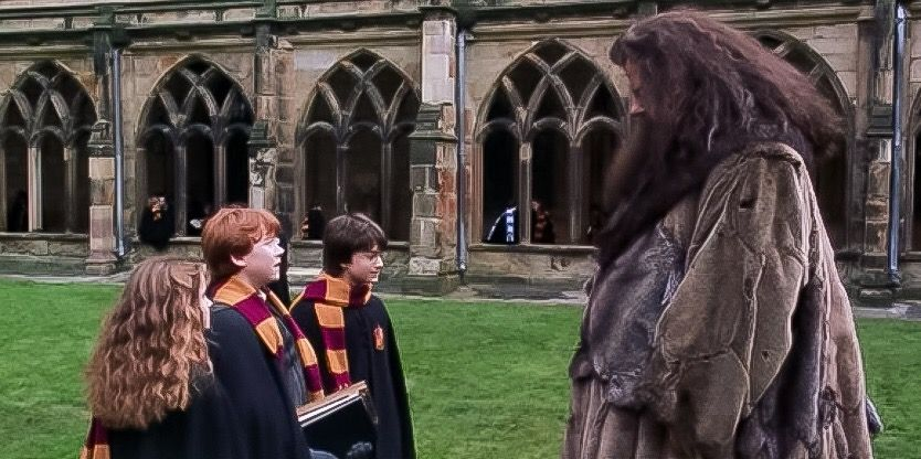 Harry Potter And The Chamber Of Secrets Hogwarts Harry Ron And Hermione Talk To Hagrid Harry Potter Obsession Harry Potter Fantastic Beasts Harry Potter