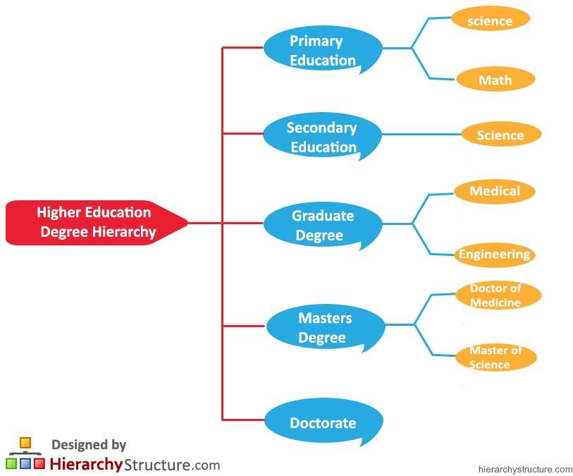 Higher Education Degree Hierarchy Education Degree Higher