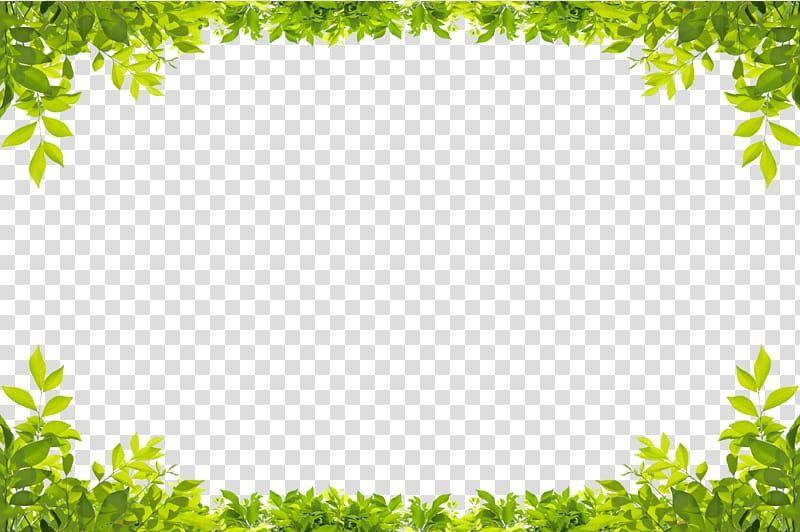 Leaf Green Green Leaves Border Low Angle Of Green Leaf Plant Transparent Background Png Clipart In 2021 Green Leaf Background Leaf Illustration Flower Border