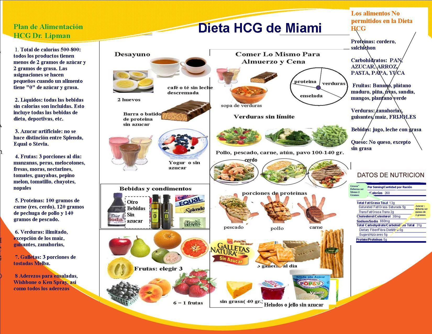 Dr Lipman Hcg Food List