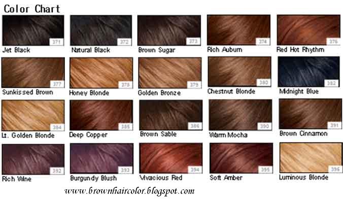 Shades Of Medium Brown Hair Color Chart Kehwloa Hair Colors