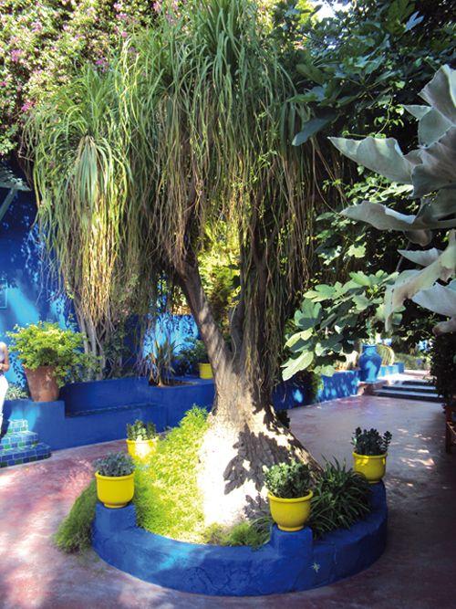 Le jardin Majorelle à Marrakech (Maroc) #blog #voyage #conseils #Maroc www.planete3w.fr