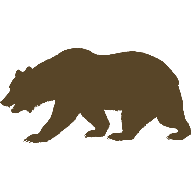 California bear. Outline print outs