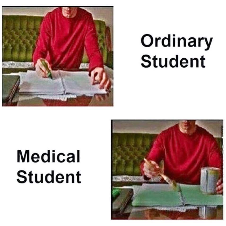 Medical Students Vs Other Students Doctor Medlife