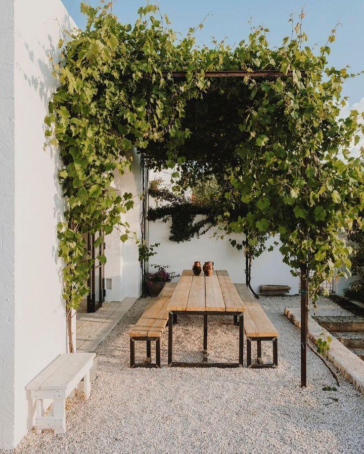 Es dauerte nur ein paar Jahre, bis die Trauben die Pergola bedeckten. Mein erste… - Modern #gardenoutdoors